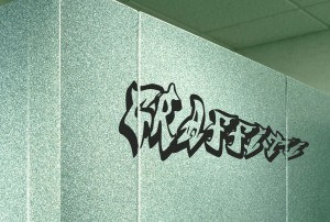 Privacy Partition Graffiti cleans easily